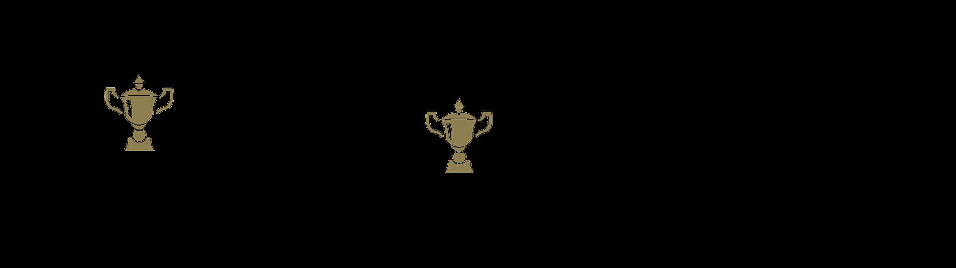 Champion Trophies and Awards regular logo and landscape logo